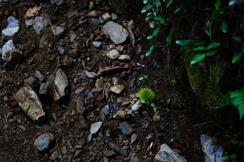 f:id:outdoor-kanazawa:20150809195956j:plain