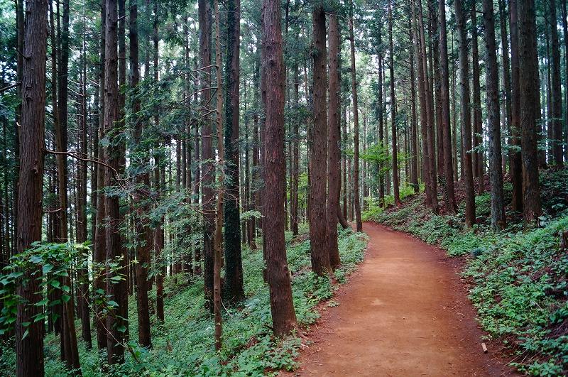 f:id:outdoor-kanazawa:20150809200631j:plain