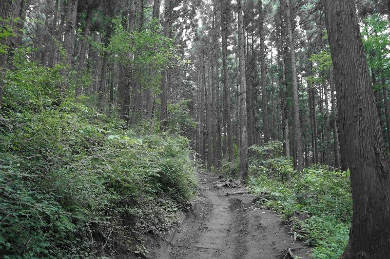 f:id:outdoor-kanazawa:20150809200730j:plain