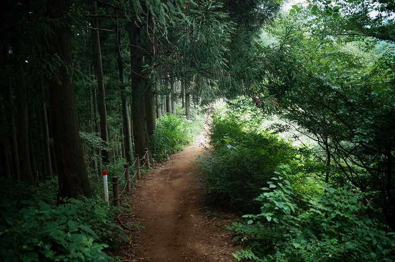 f:id:outdoor-kanazawa:20150809200822j:plain