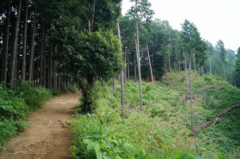 f:id:outdoor-kanazawa:20150809200856j:plain