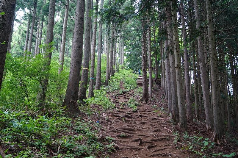 f:id:outdoor-kanazawa:20150809202118j:plain
