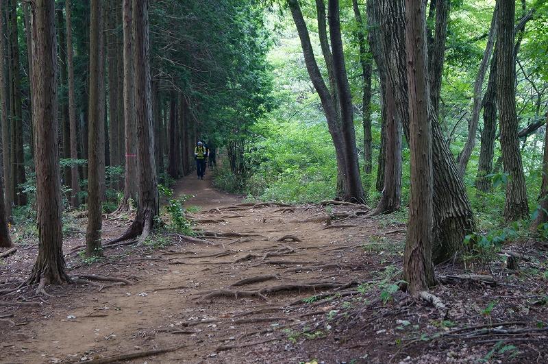 f:id:outdoor-kanazawa:20150809202347j:plain