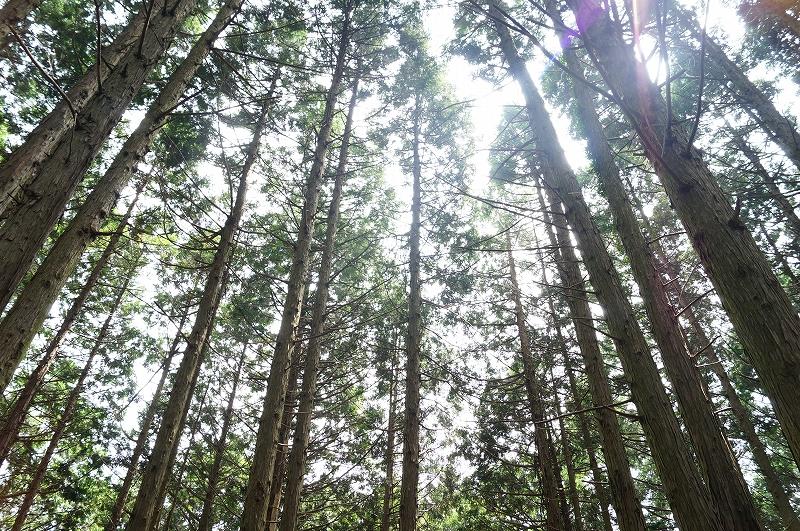 f:id:outdoor-kanazawa:20150809202353j:plain