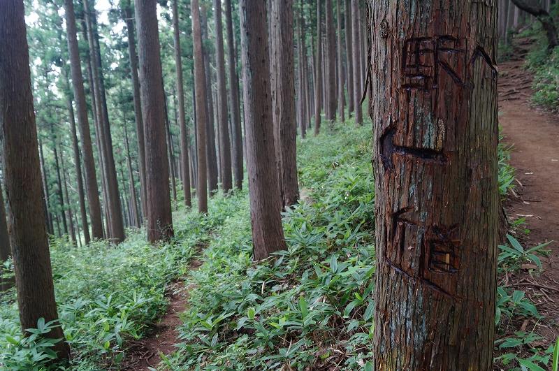 f:id:outdoor-kanazawa:20150809202503j:plain