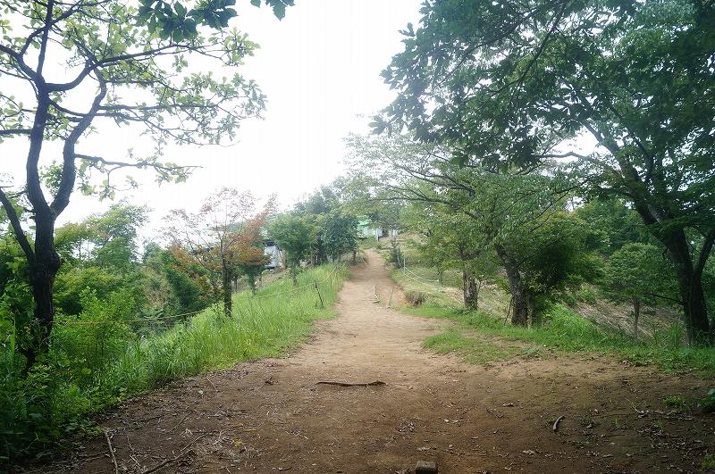 f:id:outdoor-kanazawa:20150809203013j:plain