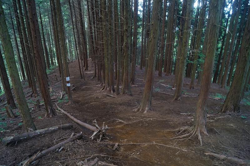 f:id:outdoor-kanazawa:20150809203915j:plain
