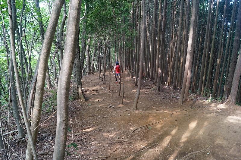 f:id:outdoor-kanazawa:20150809204204j:plain
