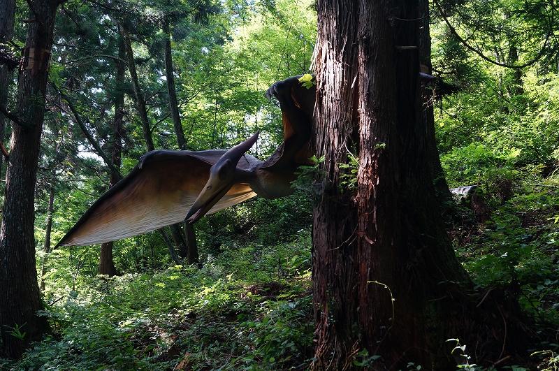 f:id:outdoor-kanazawa:20150817000059j:plain
