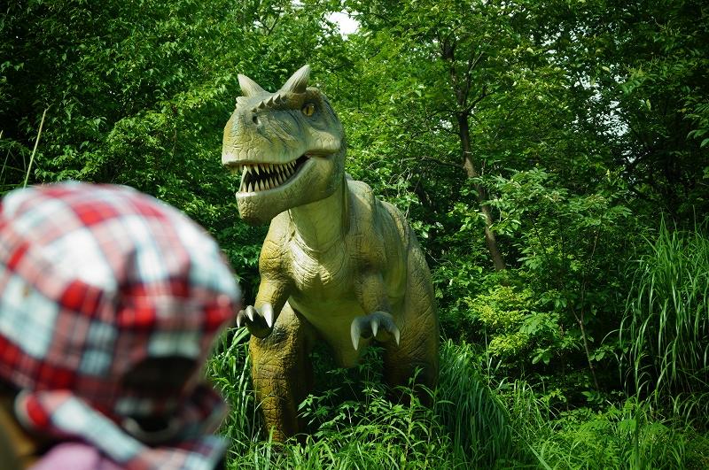 f:id:outdoor-kanazawa:20150817001427j:plain