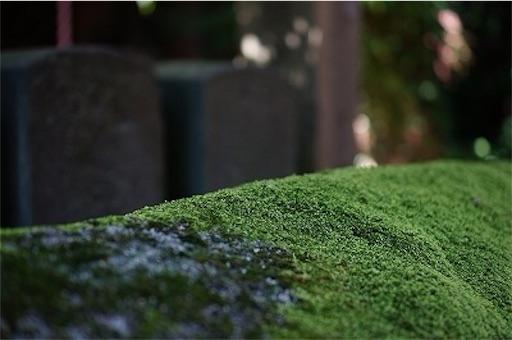 f:id:outdoor-kanazawa:20151007085329j:image