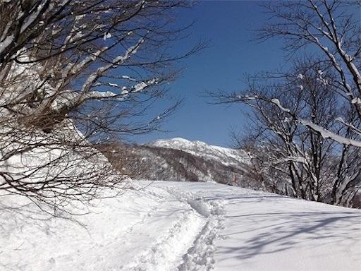 f:id:outdoor-kanazawa:20151113212927j:image