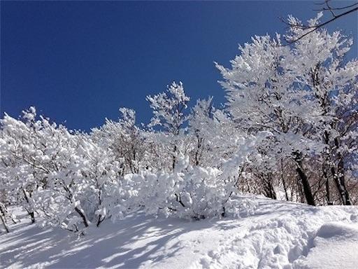 f:id:outdoor-kanazawa:20151113213304j:image