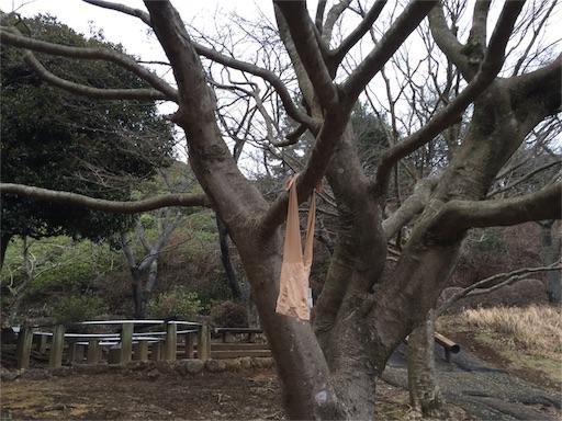 f:id:outdoor-kanazawa:20160214161224j:image