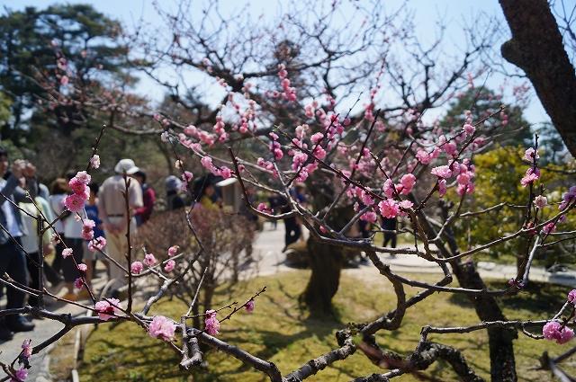 f:id:outdoor-kanazawa:20160403095557j:plain