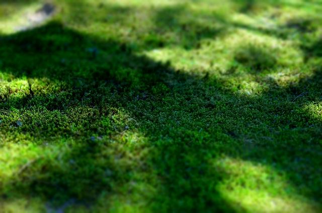 f:id:outdoor-kanazawa:20160403100203j:plain