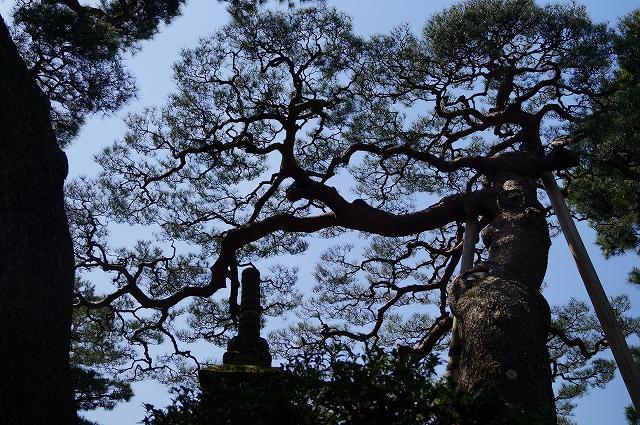 f:id:outdoor-kanazawa:20160403101620j:plain