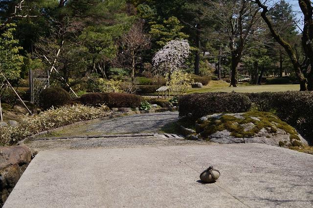 f:id:outdoor-kanazawa:20160403102337j:plain