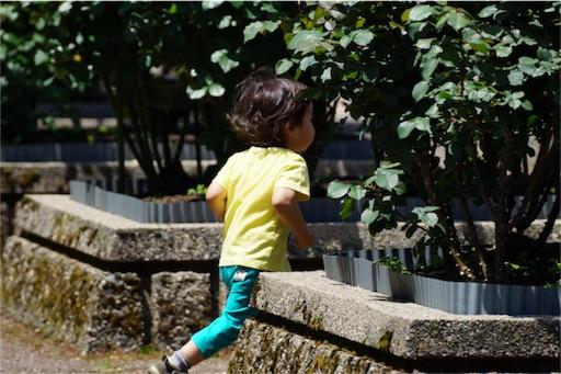 f:id:outdoor-kanazawa:20160512125714j:image