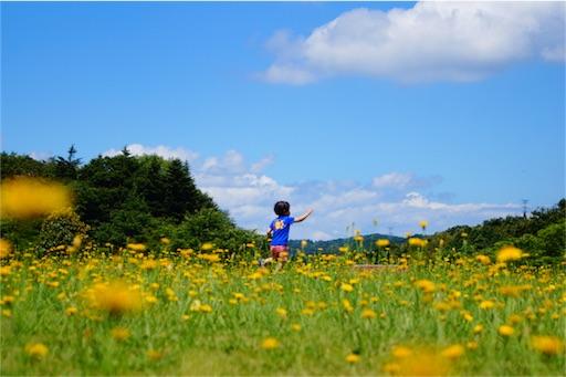 f:id:outdoor-kanazawa:20160626210332j:image