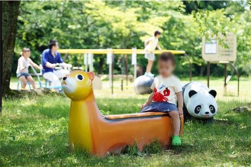 f:id:outdoor-kanazawa:20160626214011j:image