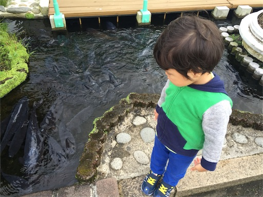 f:id:outdoor-kanazawa:20161023162053j:image
