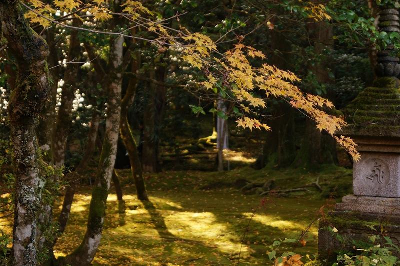 f:id:outdoor-kanazawa:20161119145204j:plain