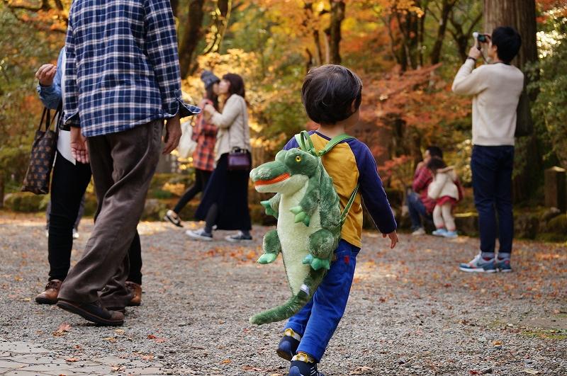 f:id:outdoor-kanazawa:20161119150939j:plain