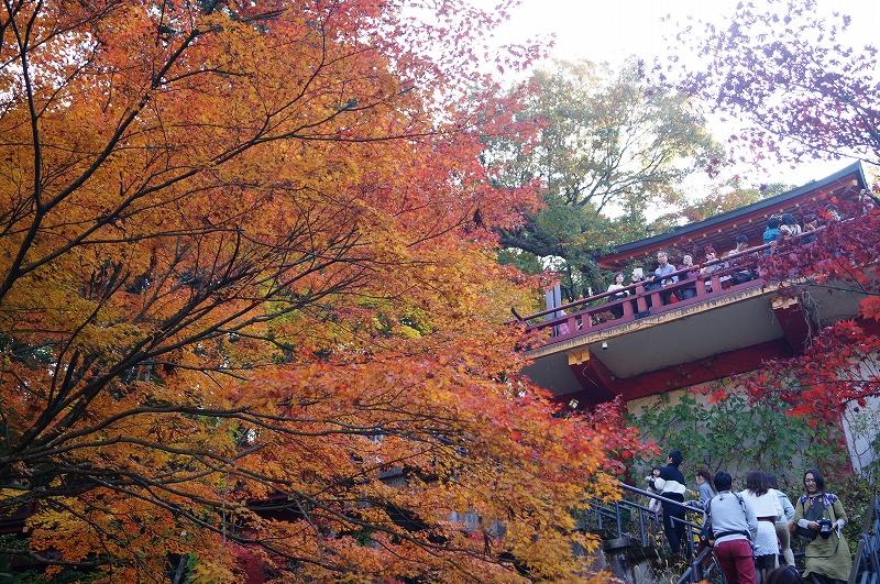 f:id:outdoor-kanazawa:20161119152032j:plain