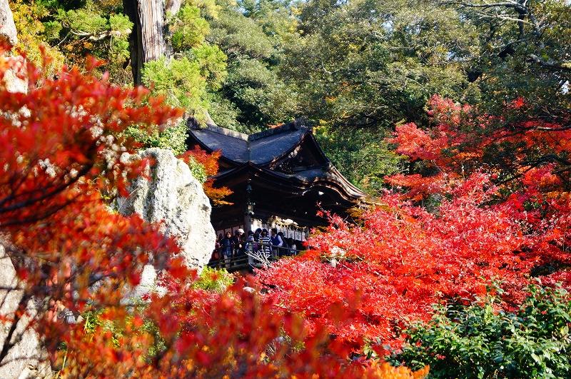 f:id:outdoor-kanazawa:20161119152723j:plain