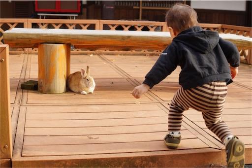f:id:outdoor-kanazawa:20161201195359j:image
