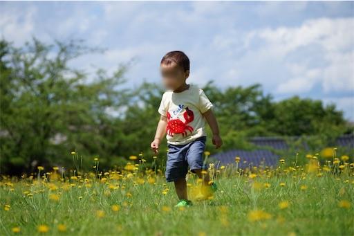 f:id:outdoor-kanazawa:20170313230356j:image