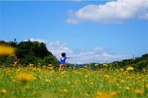 f:id:outdoor-kanazawa:20170313230713j:image