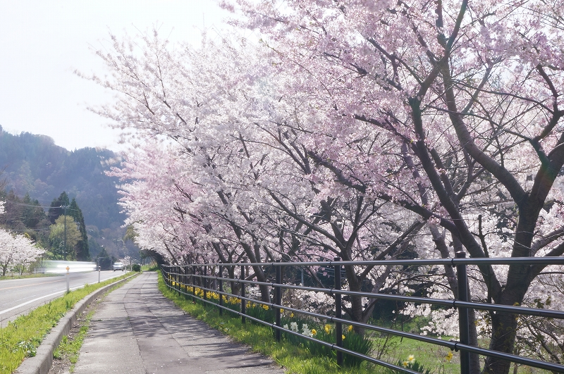 f:id:outdoor-kanazawa:20170323105342j:plain