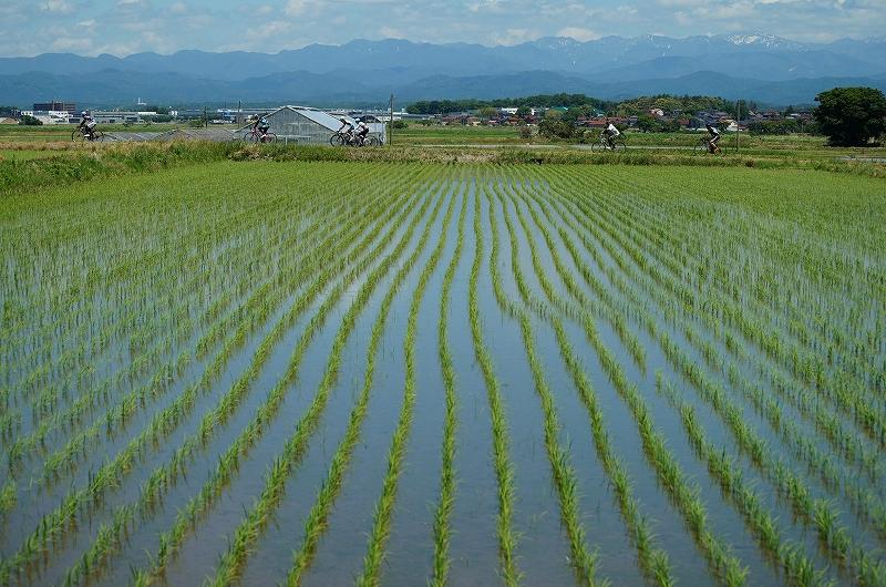 f:id:outdoor-kanazawa:20170528215124j:plain