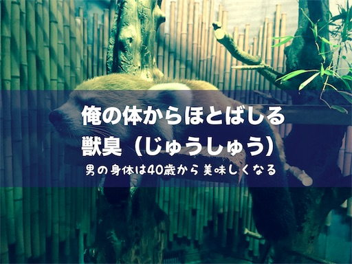 f:id:outdoor-kanazawa:20180914142901j:image