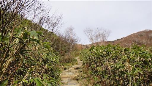 f:id:outdoor-kanazawa:20181004143104j:image