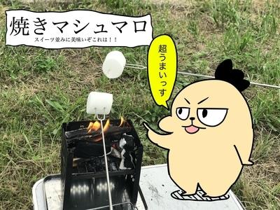 f:id:outdoor-kanazawa:20210330191529j:plain