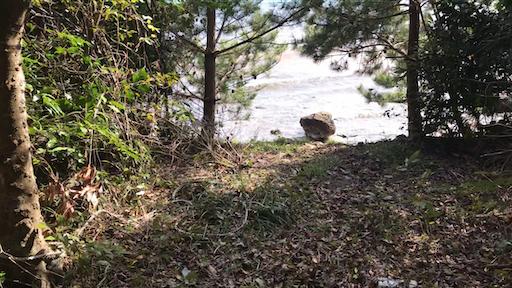 f:id:outdoor-kanazawa:20210406214113p:image