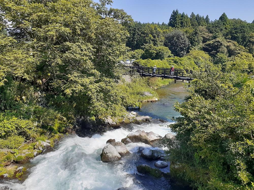 世界遺産の白糸の滝。冨士の麓は水がキレイ