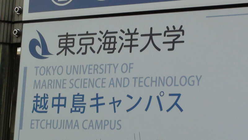 東京 海洋 大学 オープン キャンパス
