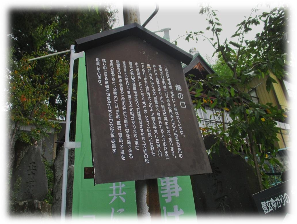 f:id:owari-nagoya55:20191109205034j:plain