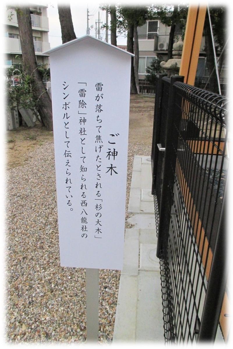 f:id:owari-nagoya55:20191114104019j:plain