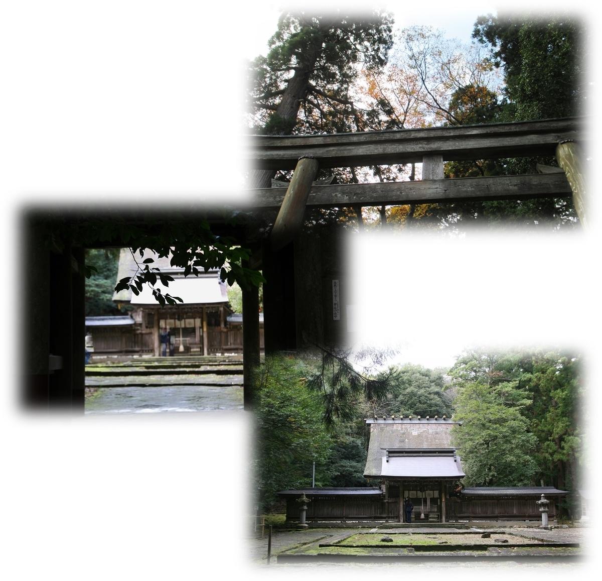 f:id:owari-nagoya55:20191118093348j:plain
