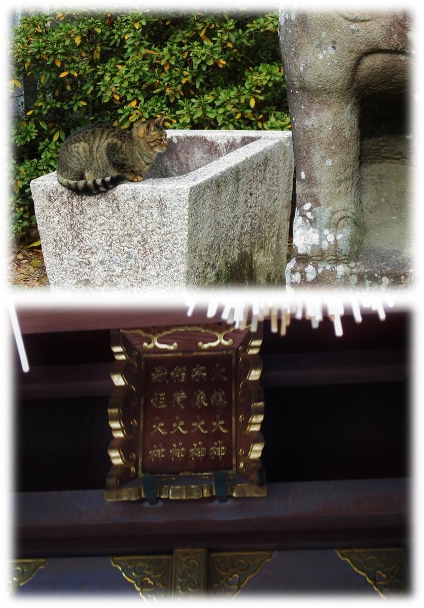 f:id:owari-nagoya55:20200103003259j:plain