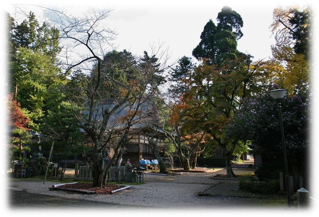 f:id:owari-nagoya55:20200110090322j:plain