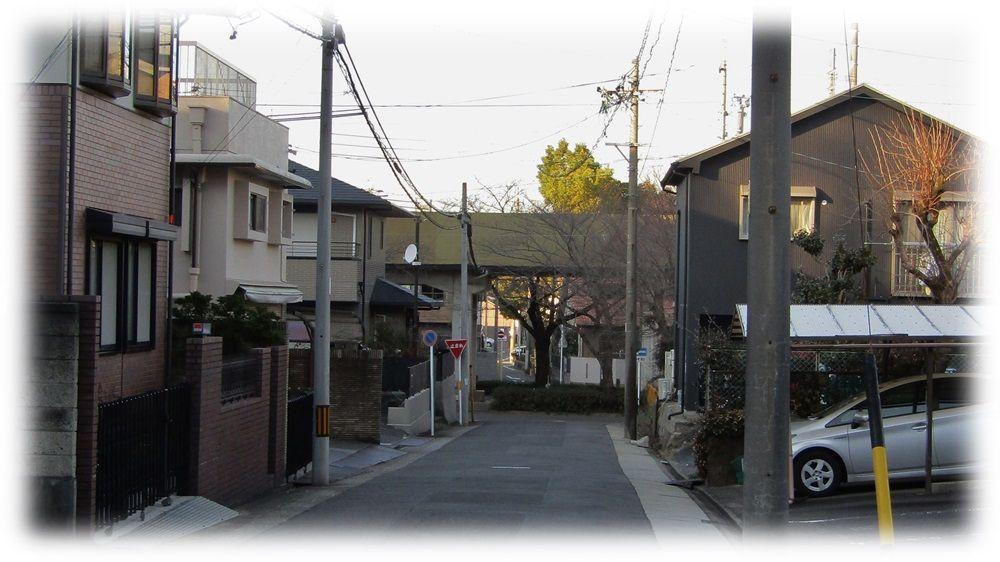f:id:owari-nagoya55:20200115234341j:plain