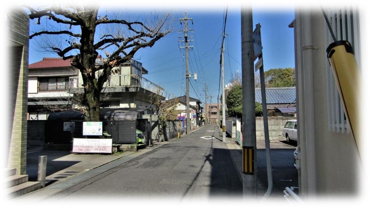 f:id:owari-nagoya55:20200313210325j:plain
