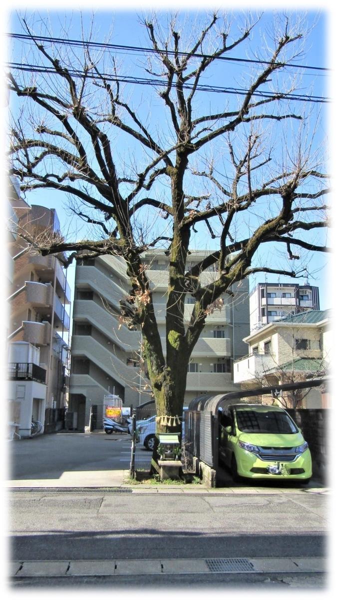 f:id:owari-nagoya55:20200313210347j:plain