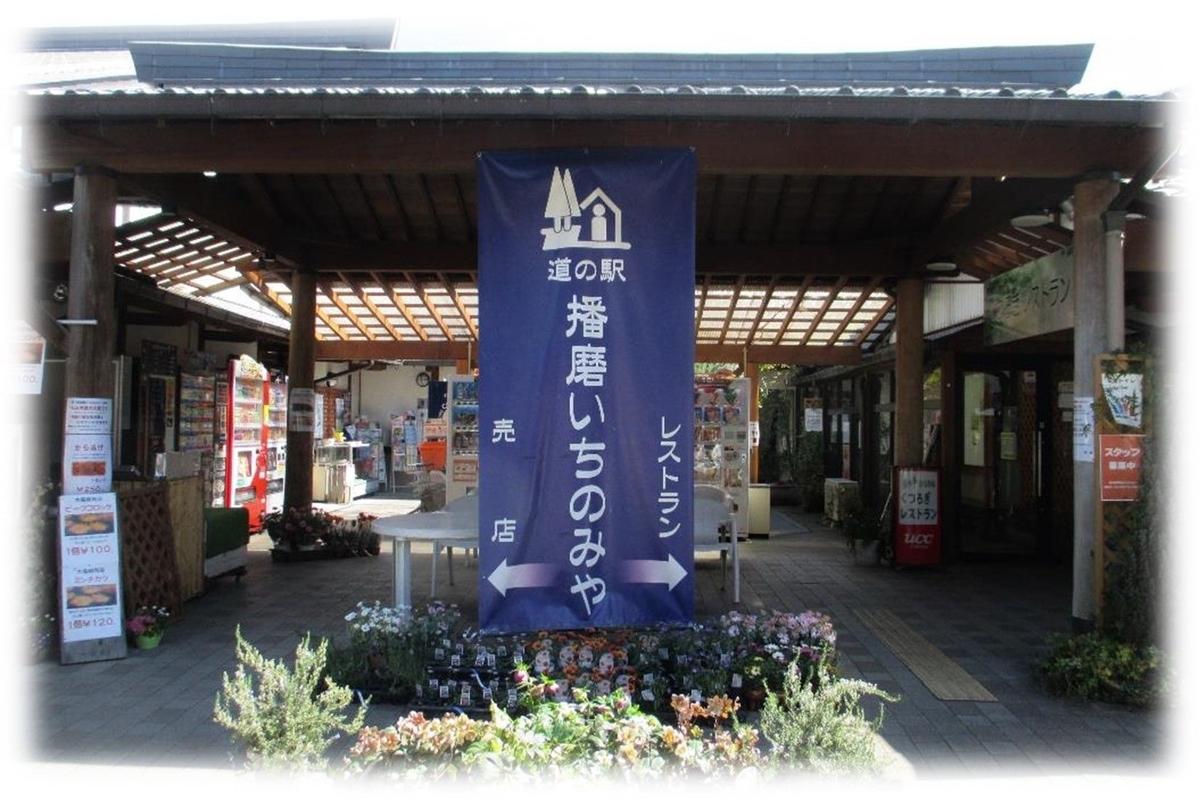 f:id:owari-nagoya55:20200330222759j:plain